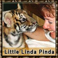 LittleLindaPind